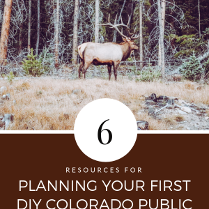 Planning your first DIY Colorado public land elk hunt can seem overwhelming at first. From knowing where to purchase your OTC elk tag, to what gear for high elevation hunting, to how to pick your unit, if it's your first DIY Colorado, public land elk hunt it can seem like a daunting task. I'm sharing six resources that I highly recommend that will help you start planning your first DIY Colorado elk hunt. #publiclandhunting #coloradoelkhunting #DIYelkhunting #primalpioneer #OTCelkhunting