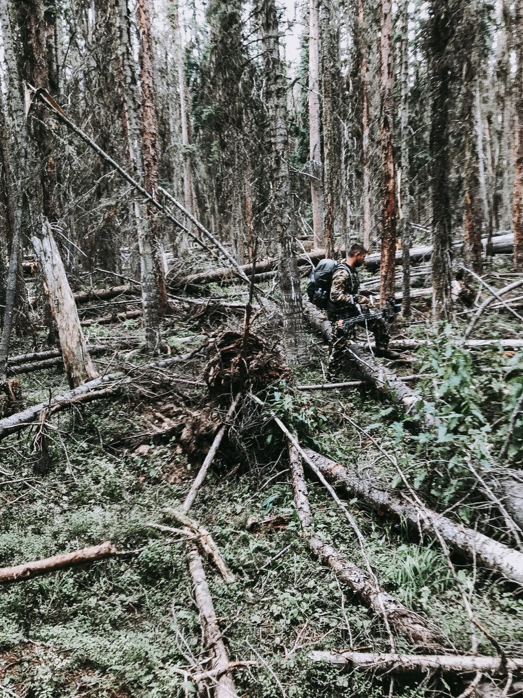Mike traversing a tree blow down during a Colorado elk hunt