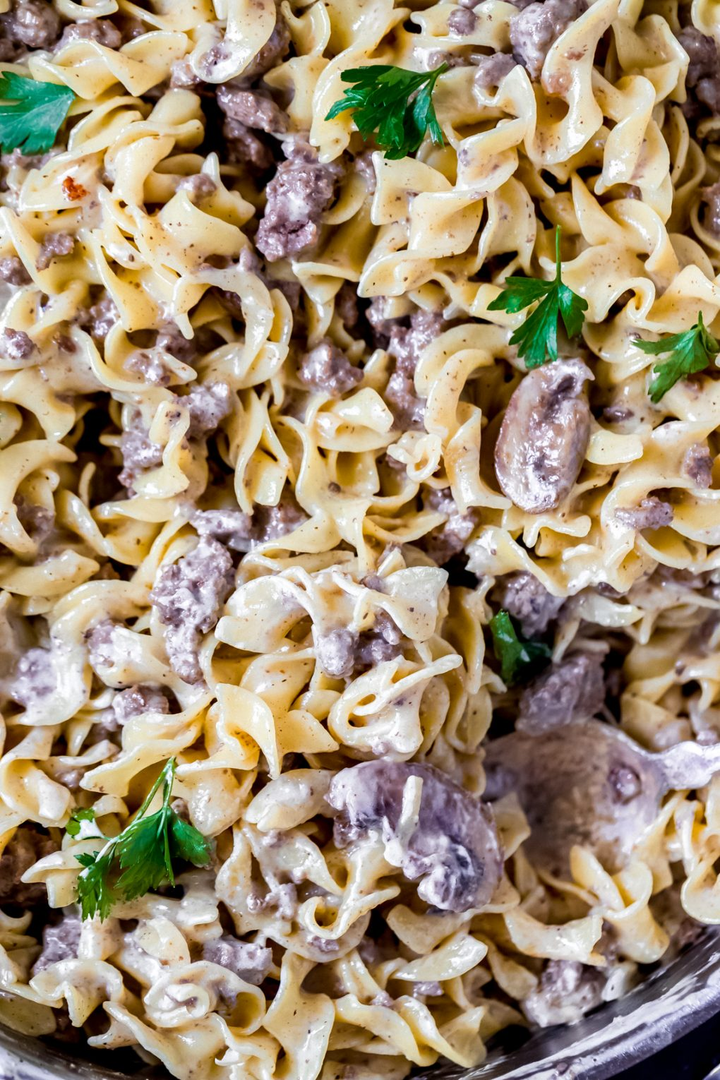 a pan full of ground elk stroganoff