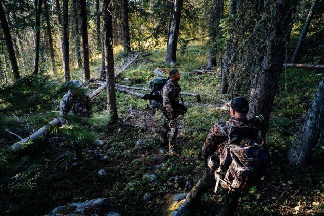 Merino Wool for Hunting